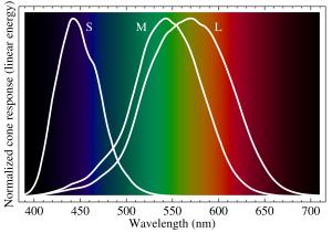 2000px-Cone-fundamentals-with-srgb-spectrum.svg